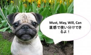 ネイティブの視点から直感で使い分け! ~ Can, Must, May, Will