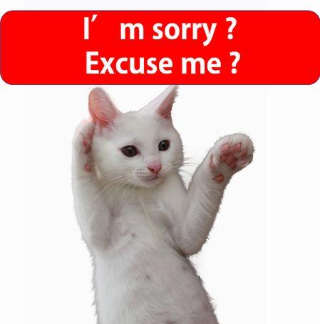 そうなんだ!!I am sorryとexcuse meの違い