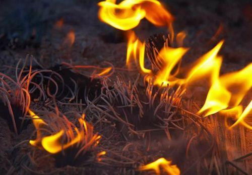 盂蘭盆 火