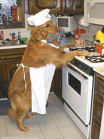 英語でクッキング! コトコト煮るって英語で何ていう?