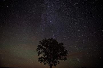 冬の夜空を見上げてみましょう!星に関する英語表現