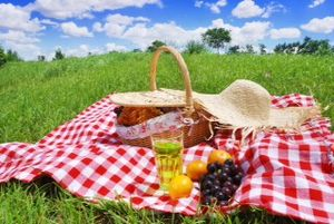 Let's go on a picnic !
