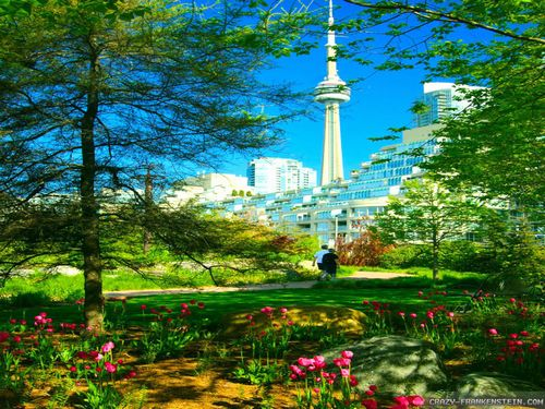 toronto-spring