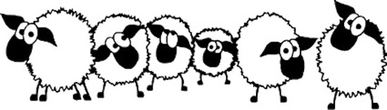 you are sheep