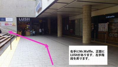 横浜駅LUSHとワッフル