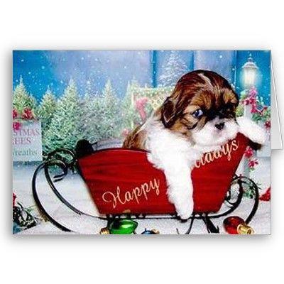 子犬のクリスマス