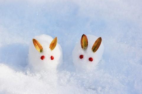 雪を使った英語表現