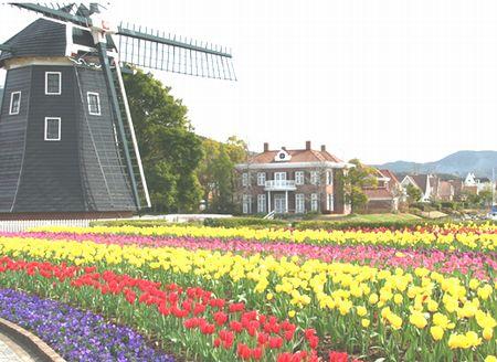 皆さま、ぜひオランダへ!