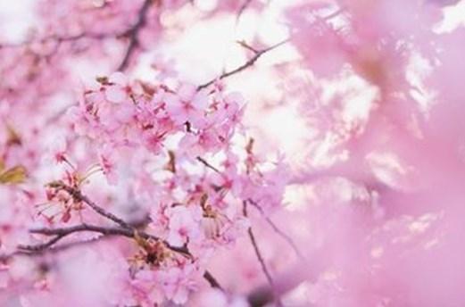 春は異動・出会いの季節! ☆連絡先を交換するシーンで役立つフレーズ☆