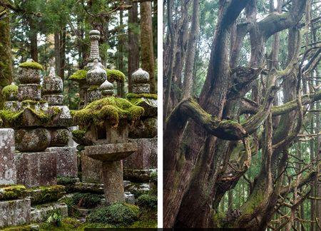 Kumano-Kodo, the Kohechi route by Judith