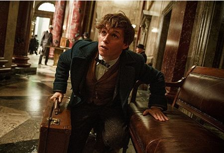 Fantastic Beasts and Where to Find Them4