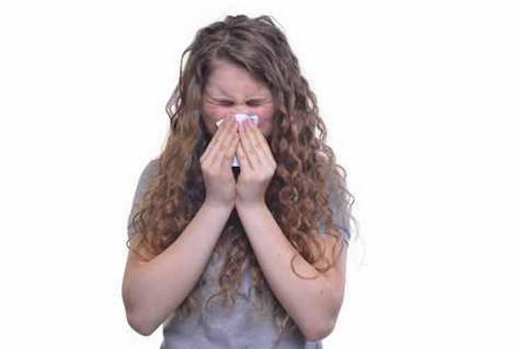 花粉症シーズン必須の表現(特に今年は!) – 英語では花粉症って何ていうの?