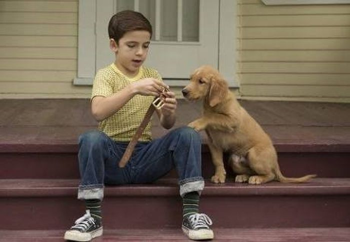 A Dog's Purpose4