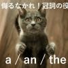 英語冠詞の解説