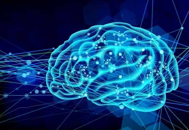 アセチルコリンと脳