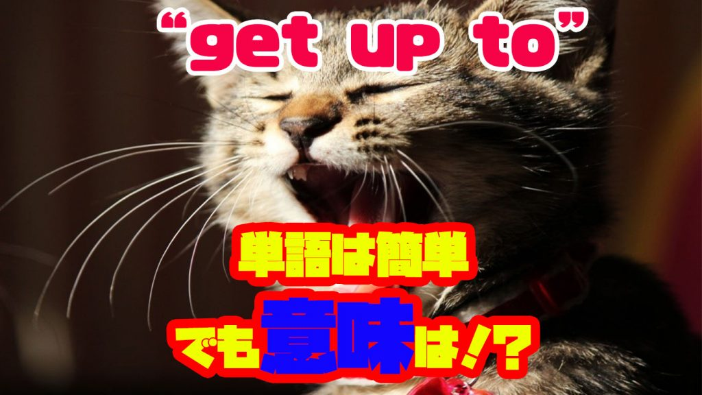 """What did you get up to yesterday?""って?簡単そうでわからない!そんな""get""を使ったフレーズ集"