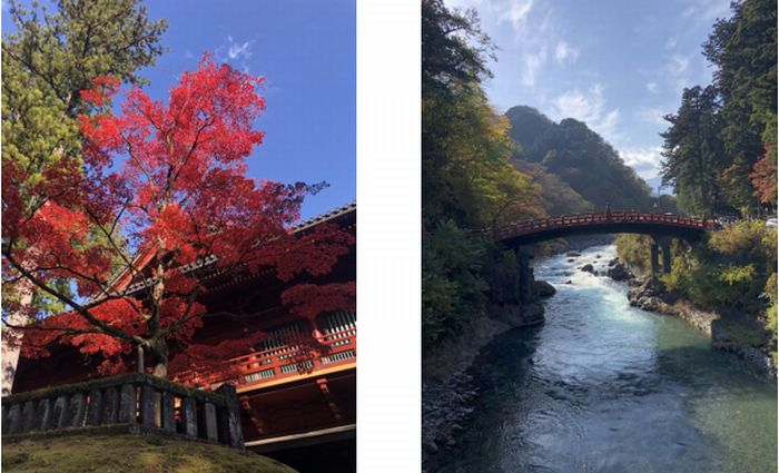My First Six Months in Japan by Joanne