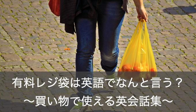 「レジ袋有料化」や「レジ袋はいりますか?」を英語で伝える方法を5分でマスター!