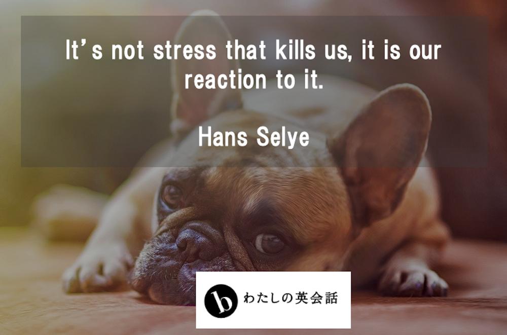 ハンス・セリエのストレスに関する名言
