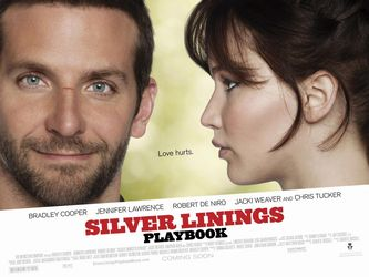 Silver Linings Playbook by Karina