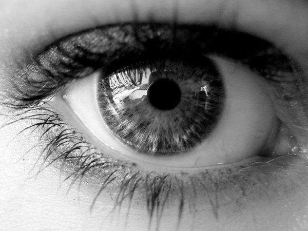 目 ヂ カ ラ を 極 め る。~keep an eye on~